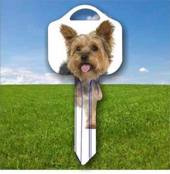 Fanschlüssel Tiermotiv Yorkshire Terrier Hund