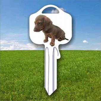 Fanschlüssel Tiermotiv Dackel Hund