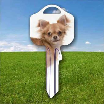 Fanschlüssel Tiermotiv Chihuahua Hund